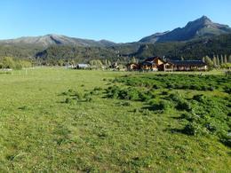 Foto Campo en Venta en  Cholila,  Cushamen  Río Carrileufu