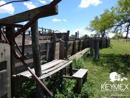 Foto Campo en Alquiler en  Las Avispas,  San Cristobal  Las Avispas