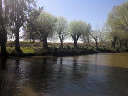 Foto Quinta en Venta en  Carabelas Grande,  Zona Delta San Fernando  Carabelas
