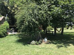 Foto Campo en Alquiler en  Torres,  Lujan  Increible Haras de polo de 50ha en Open Door