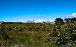 Foto Terreno en Venta en  Bariloche ,  Rio Negro  Las Chacras