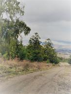 Foto Terreno en Venta en  Trevelin,  Futaleufu  Callejón Williams - Loteo Los Ciervos - Parcela 263