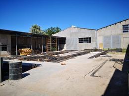 Foto Bodega Industrial en Renta en  San Felipe,  Chihuahua  BODEGA EN RENTA EN SAN FELIPE CERCA DE AV. UNIVERSIDAD
