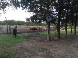 Foto Campo en Venta en  Santa Maria ,  Cordoba  Campo a metros de Ruta C-45
