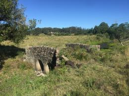 Foto Chacra en Venta en  El Quijote,  La Barra   FASANO chacra agua verde