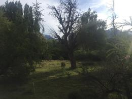 Foto Campo en Venta en  Trevelin,  Futaleufu  Los Cipreses