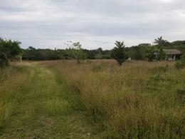 Foto Terreno en Venta en  Tampico Alto ,  Veracruz  Venta de Terreno en Col. Petrolera, Tampico alto
