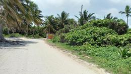 Foto Terreno en Venta en  Tulum ,  Quintana Roo  TERRENO EN BOCA PAILA