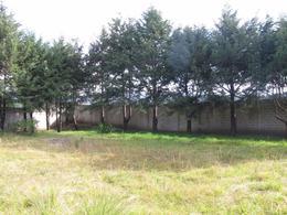 Foto Terreno en Venta en  San Miguel Ameyalco,  Lerma  TERRENO RESIDENCIAL EN VENTA EN AMEYALCO SBR 1148