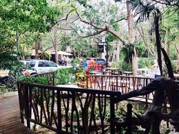 Foto Local en Renta en  Playa del Carmen ,  Quintana Roo  Locales comerciales Shangri La, Playa del Carmen P2659