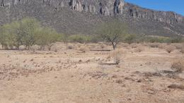 Foto Terreno en Venta en  Hermosillo ,  Sonora  TERRENO EN VENTA EN CAMPESTRE LOS PINOS EN HERMOSILLO, SONORA
