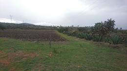 Foto Terreno en Venta en  Rancho o rancheria Loma Colorada,  Nopala de Villagrán  Terreno en venta Hidalgo