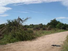 Foto Terreno en Venta en  Colon,  Colon  Paysandú Oeste