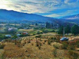 Foto Terreno en Venta en  Tafi Del Valle ,  Tucumán  TERRENO EN VENTA 1470 M2. ZONA ARROYO MORALES. LA OVEJERÍA