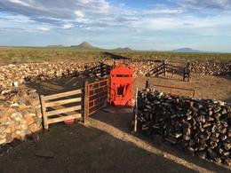 Foto Finca en Venta en  Chihuahua ,  Chihuahua  Rancho El Socorro