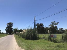 Foto Terreno en Venta en  General Belgrano,  General Belgrano  Calle 135 entre 50 y 52 al 100