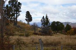Foto Campo en Venta en  Trevelin,  Futaleufu  Chacra 10 has