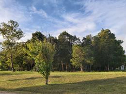 Foto Terreno en Venta en   Cumbres de Carrasco,  Countries/B.Cerrado (Carrasco)  Terreno en venta Cumbres de Carrasco