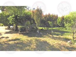 Foto Quinta en Venta en  Congregacion Gral. José María Morelos y Pavón,  Aguascalientes  M&C VENTA DE CASA DE CAMPO EN CAÑADA HONDA, AGUASCALIENTES