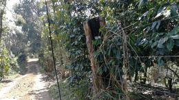 Foto Terreno en Venta en  Plan de la Cruz,  Coatepec  Plan de la Cruz