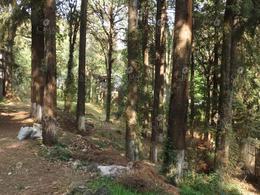 Foto Terreno en Venta en  Fraccionamiento San José de La Montaña,  Huitzilac  Venta Terreno en  San José de la Montaña, Huitzilac - T41