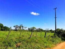 Foto Campo en Venta en  La Colmena ,  Paraguarí  La Colmena