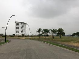 Foto Terreno en Venta en  Samborondón ,  Guayas  VENTA TERRENO AL RIO ISLA MOCOLI