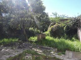 Foto Casa en Venta   Alquiler en  Sayago ,  Montevideo  Casa 5 dormitorios y apartamento de servicio con jardín y gran fondo