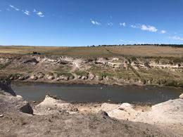Foto Campo en Venta en  Puan,  Puan  Campo aptitud ganadera. Puán. Provincia de Buenos Aires