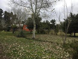 Foto Casa en Venta en  Villa Elisa,  La Plata  426 e/ 140 y 141 - Villa Elisa