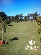 Foto Quinta en Venta en  Berisso ,  G.B.A. Zona Sur  Calle 721