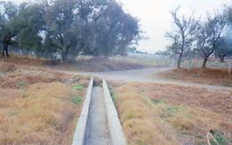 Foto Terreno en Venta en  Zumpango ,  Edo. de México  Rancho en venta con  terreno en Zumpango, Edo. de México.