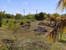 Thumbnail picture Land in Sale in  Celestún ,  Yucatán  Celestún