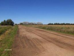 Foto Campo en Venta en  Las Flores ,  Interior Buenos Aires  2 Km RN°3 y 5 ciudad 100
