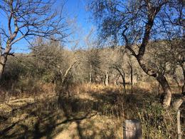 Foto Terreno en Venta en  Jose De La Quintana,  Santa Maria  Lote al pie de las Sierras