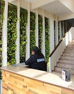 Foto Departamento en Renta en  Alvarado ,  Veracruz  DEPARTAAMENTO DE LUJO EN RENTA EN LA RIVIERA VERACRUZANA