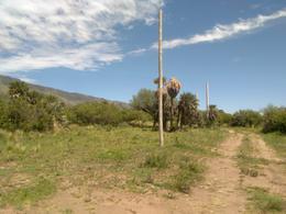 Foto Terreno en Venta en  Papagayos,  Chacabuco  LOTE EN VENTA EN PAPAGAYOS KM 41 RUTA 1