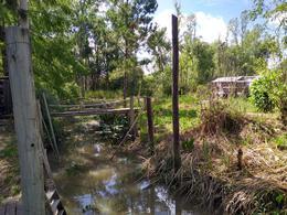 Foto Terreno en Venta en  Torito,  Zona Delta Tigre  Ar. Torito