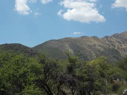 Foto Campo en Venta en  Los Molles,  Junin  Cuesta los Molles