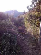 Foto Terreno en Venta en  Villa Lago Gutierrez,  San Carlos De Bariloche  De los Helechos al 300