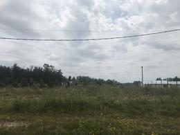 Foto Terreno en Venta en  Golf,  Punta del Este  Golf