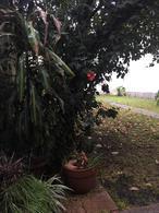 Foto Departamento en Venta en  Villa Crespo ,  Capital Federal  Estado de Isrrael al 4600