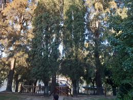 Foto Casa en Venta en  Toro,  Zona Delta Tigre  Toro Yaguareté