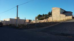 Foto Terreno en Venta en  Alta Barda,  Capital  Stefenelli y El Maiten