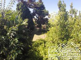 Foto Casa en Alquiler en  Temperley Este,  Temperley  ZUVIRIA 745