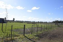 Foto Terreno en Venta en  General Belgrano,  General Belgrano  Rural y 221 al 100