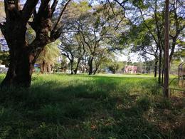 Foto Terreno en Alquiler en  Luque ,  Central  Zona Luque San Lorenzo