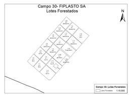 Foto Campo en Venta en  Carmen De Areco,  Carmen De Areco  200 Has en Carmen de Areco