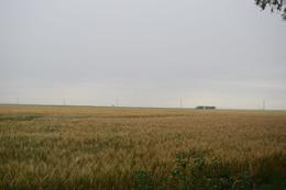 Foto Campo en Venta en  Aron Castellanos,  General Lopez  Sobre Ruta 7 - A. Castellanos - Rufino