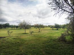 Foto Terreno en Venta en  El Golf,  Alta Gracia          OPORTUNIDAD! Terrenos en  Alta Gracia Country Golf